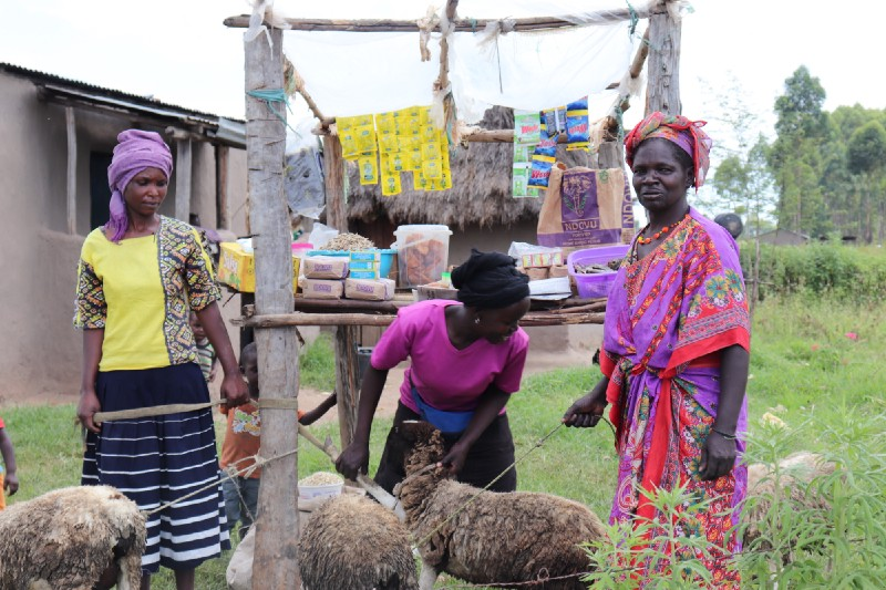 Village Enterprise business owners Monica Sitienei, Caroline Simiyu, and Lomeyen Kerio stand in front of their kiosk with theirsheep.