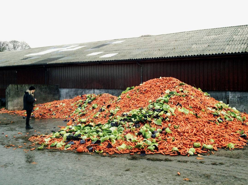 A person standing next to a mound of different veggies that are going to waste