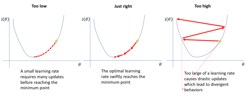 learning rate of models