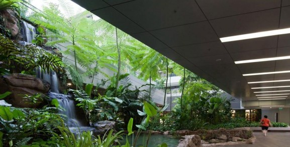 How Biophilic Design Can Improve The Spaces And Cities We