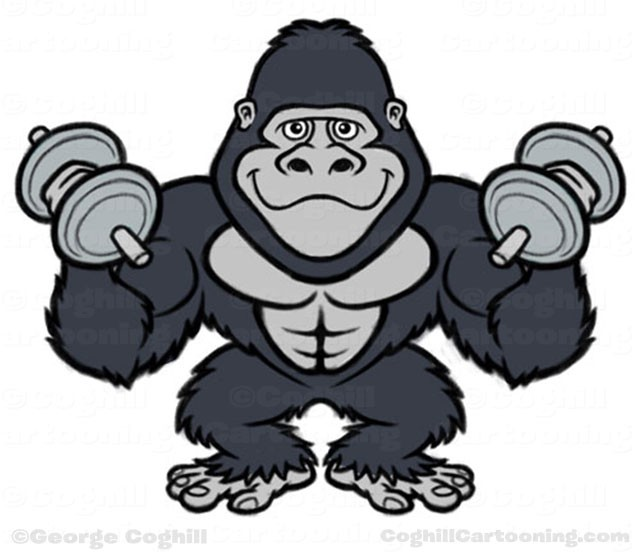 Some gorillas at the gym