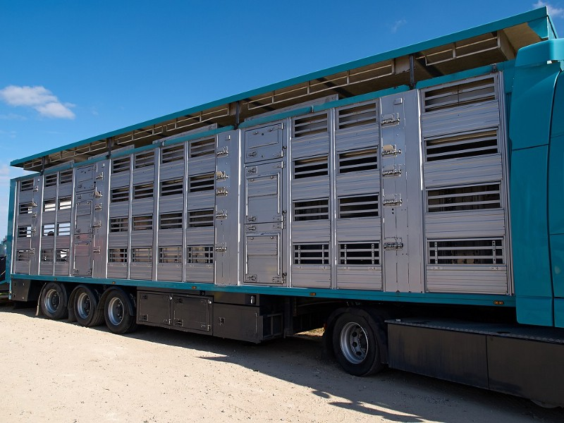 Cage Trailers for Sale