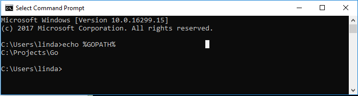 golang install package windows