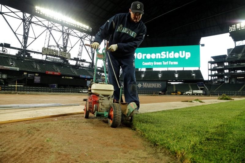 The Sod Was Harvested Night Before And Brought From Olympia To Seattle In Giant 70 Ft Long Rolls Job Went So Quickly Smoothly Crew Got A