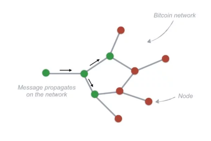 distributed networks of cryptocurrencies