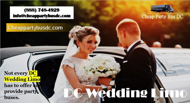 What Could A Dc Party Bus Rental Offer Bridesmaids On Your