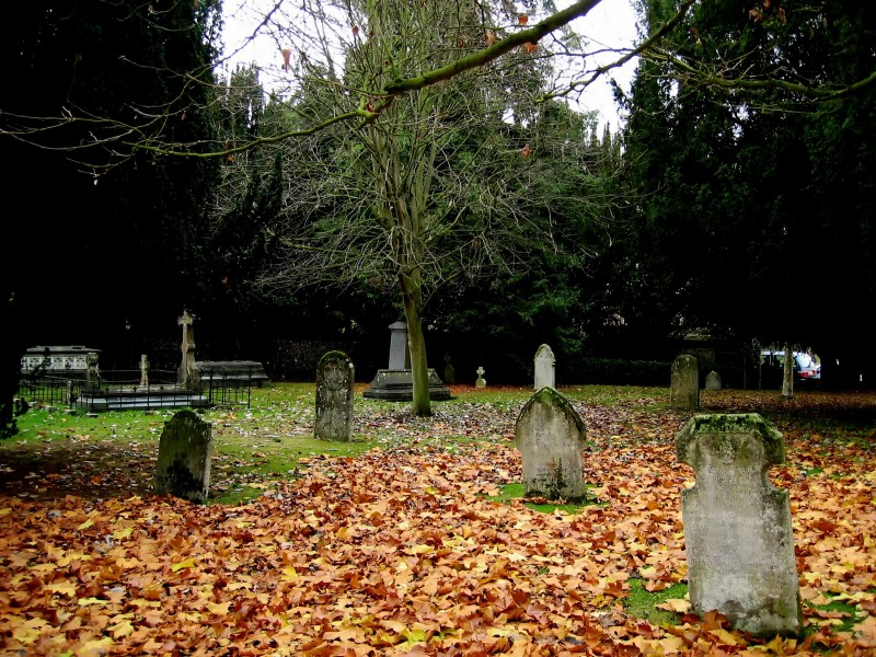 Internet marketing graveyard