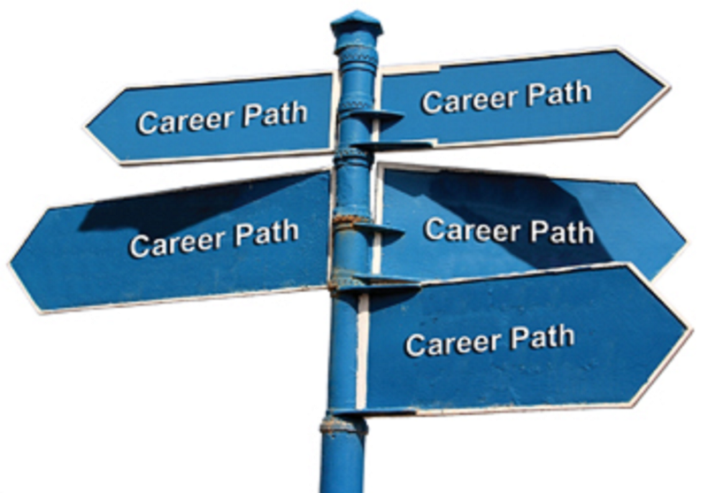 functional designation part 1 choosing a new career path - How To Decide On A Career How To Choose A Career Path