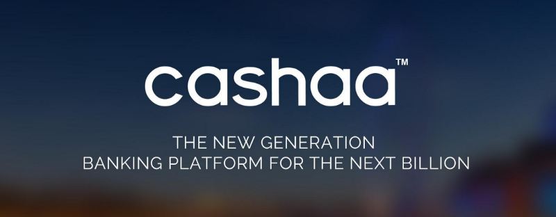 The True Value Of Cryptocurrency Tokens (Case Study: Cashaa)