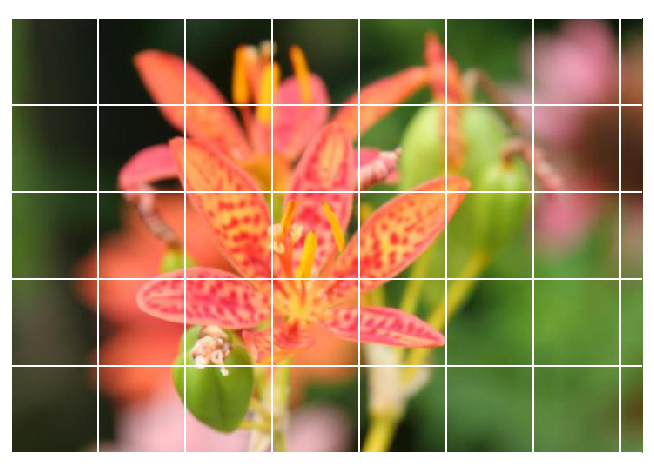 How to build an image classifier with greater than 97% accuracy
