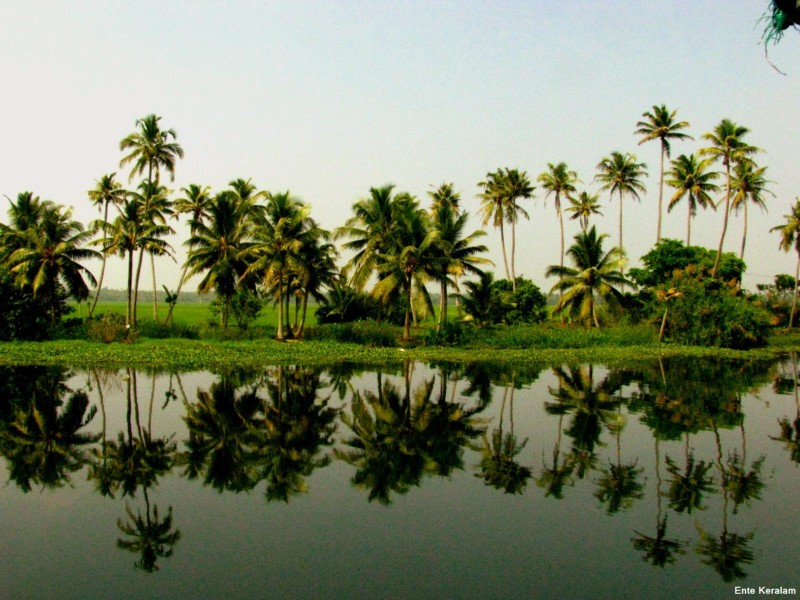 Kerala tour packages from jaipur