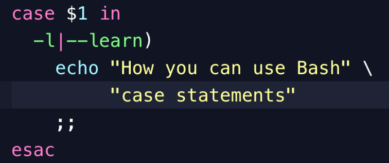 bash run exe with arguments