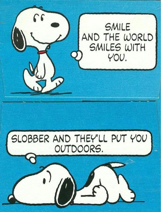 Snoopy would agree with Amanda's mantra.