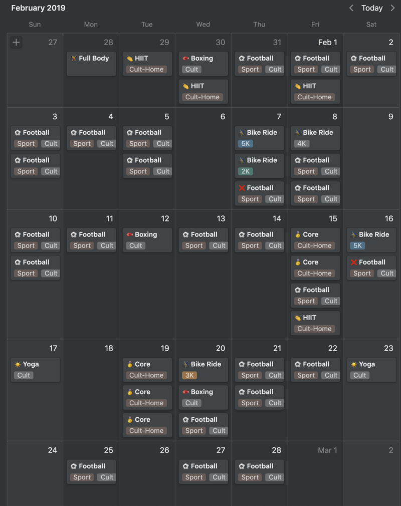 My fitness calendar from February 2019