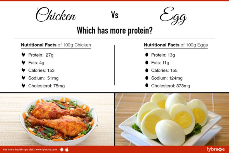Chicken vs egg which has more protein lybrate health for Protein in fish
