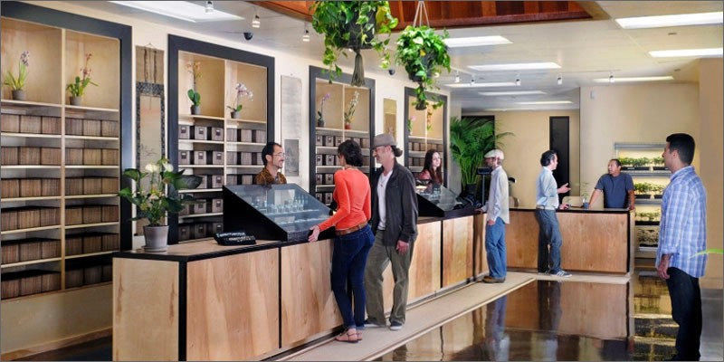 dispensary first impressions