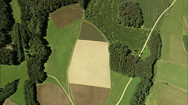 Agriculture field taken from drone