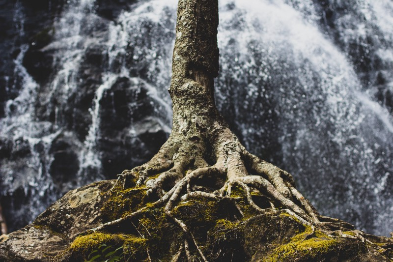 Why a domain's root can't be a CNAME — and other tidbits