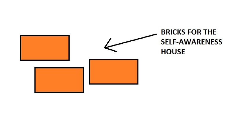 Image of bricks for the self-awareness house