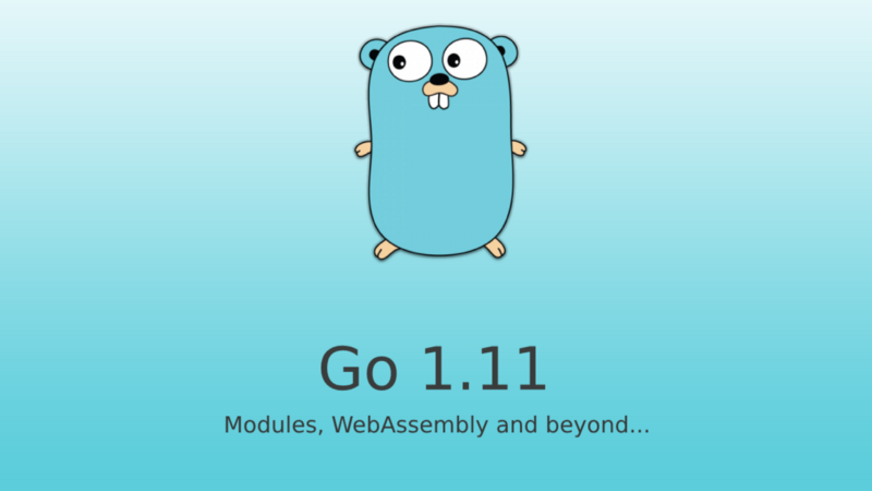 All you need to know about Go version 1 11