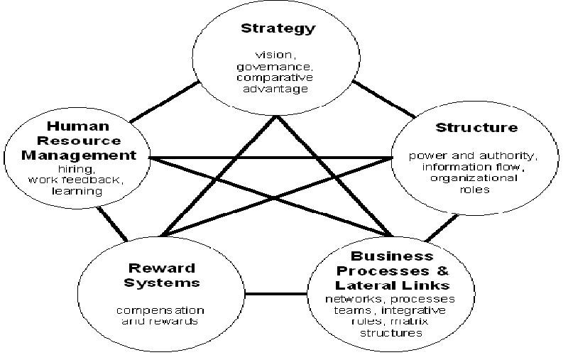 Performance Practices: Flow of Performance Management