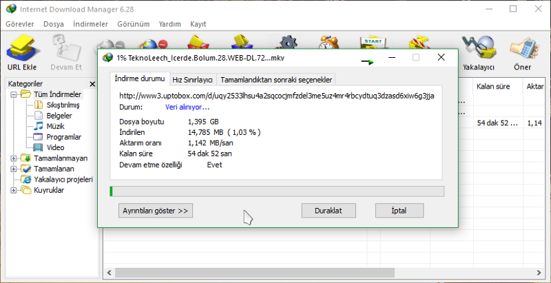 download manager full crack indir