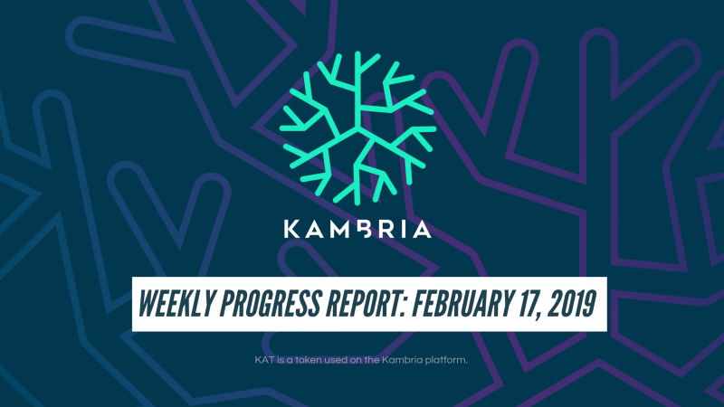 Kambria Weekly Progress Report: February 17, 2019