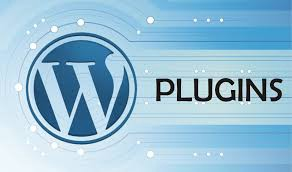How to Choose the Best WordPress Plugin for Your Website?