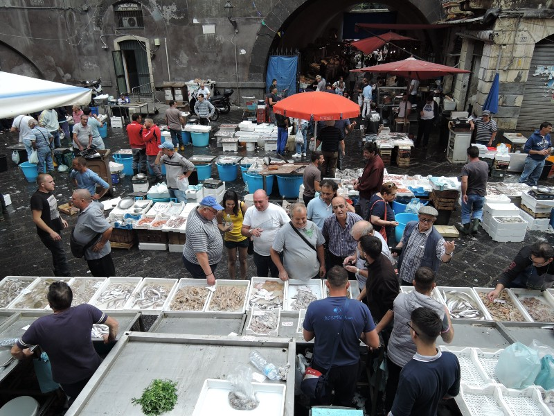I wish all of my interfaces were segregated as good as this fish at Catania fish market