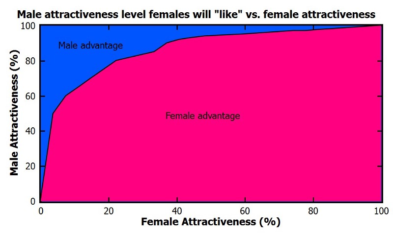 male vs female attractiveness