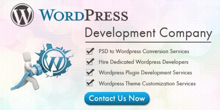 how to create a web portal with wordpress
