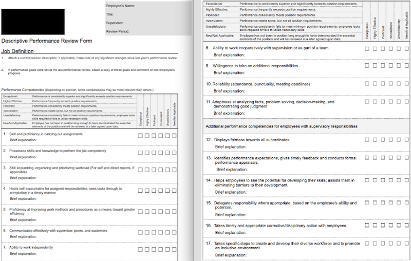 Sample Performance Appraisal Form | 70 Free Employee Performance Review Templates Word Pdf Excel