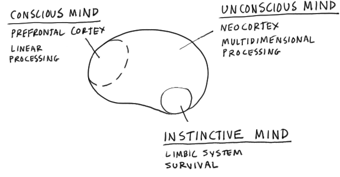 the brain as an innovation machine