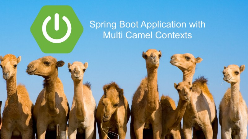 How to configure multiple Camel Contexts in the Spring Boot application