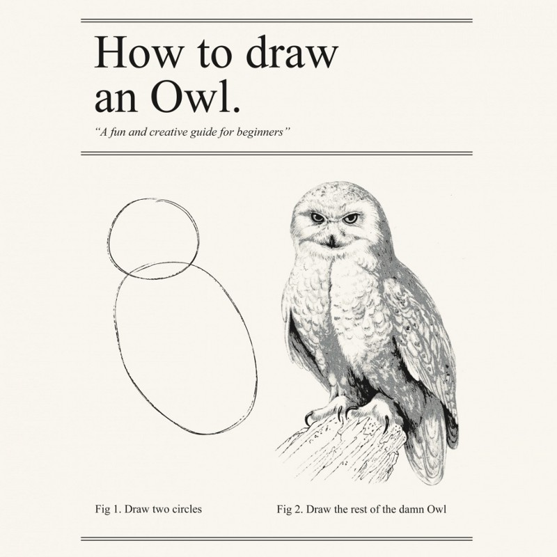 Framer for people who think things like framer are weird for Draw the owl