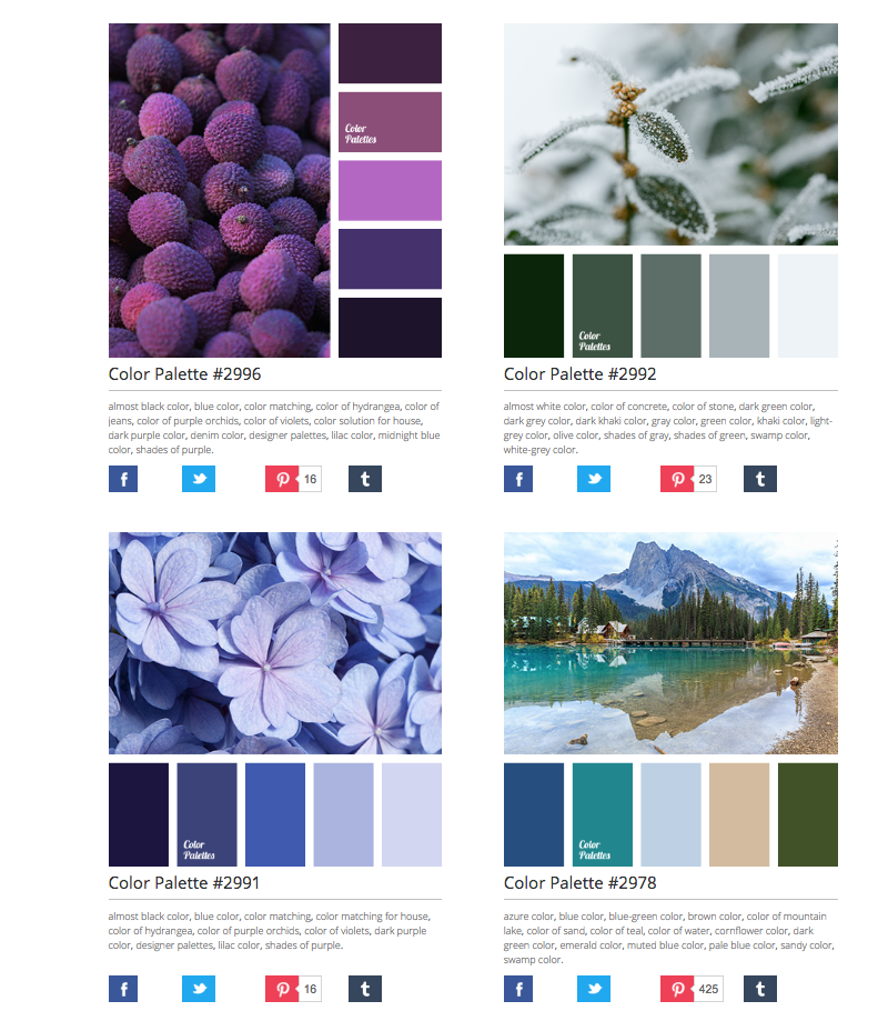 Color Palette Websites For Color Hunters Blog