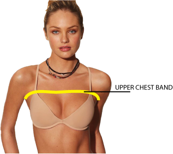 How to Measure Bra Size at Home and Look Like a Goddess
