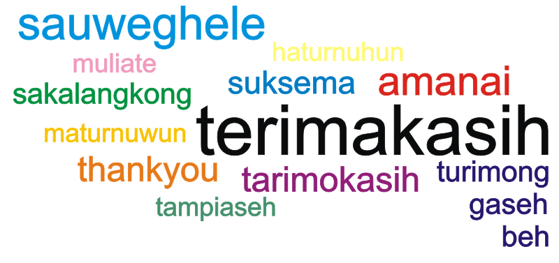 how to say thank you in indonesian slang