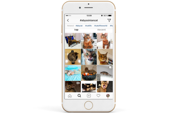 How Hashtags are Affecting Your Instagram Account