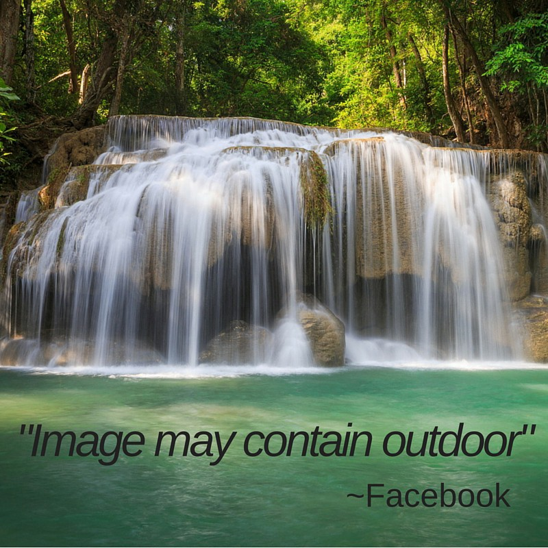 Beyond Access Facebooks Automated Image Descriptions And