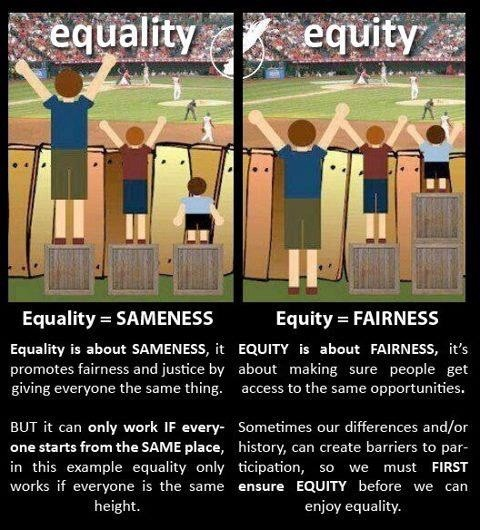 Image result for equality equity comic