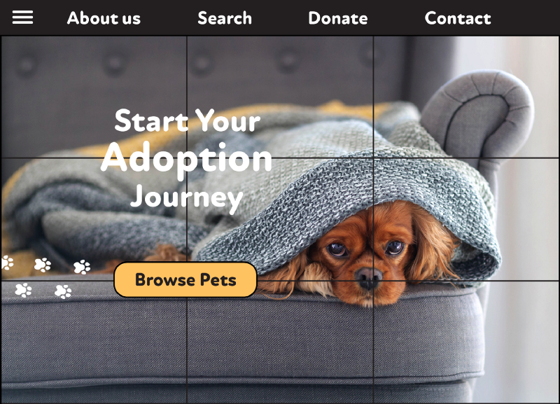 Screenshot of a pet adoption website as an example of the rule of thirds: web design. The rule of thirds for web design ensures that every element of your webpage attracts focus. Place key focus points of photographs, as well as the most important text, buttons, and CTA's along the four intersections.