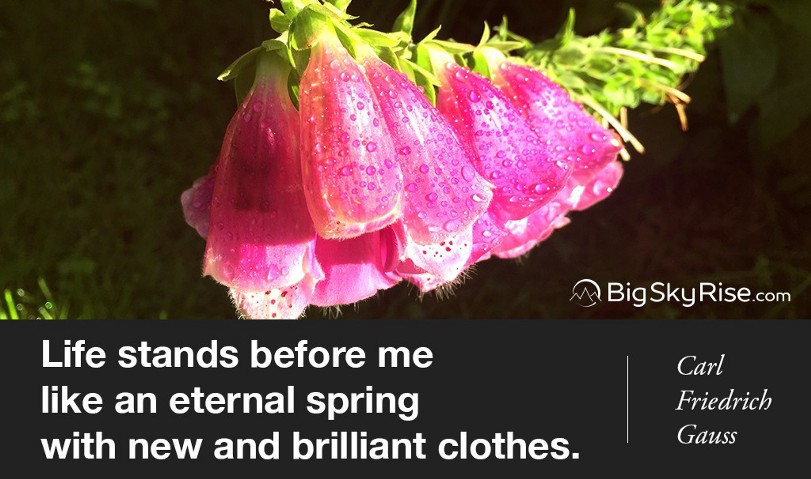 Life stands before me like an eternal spring with new and brilliant clothes. — Carl Friedrich Gauss