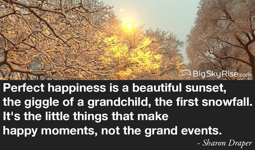 Perfect happiness is a beautiful sunset, the giggle of a grandchild, the first snowfall. It's the little things that make happy moments, not the grand events. — Sharon Draper