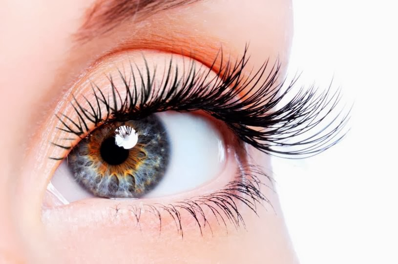 Do Eyelashes Grow Back Best Eyelash Extension Glue For Women
