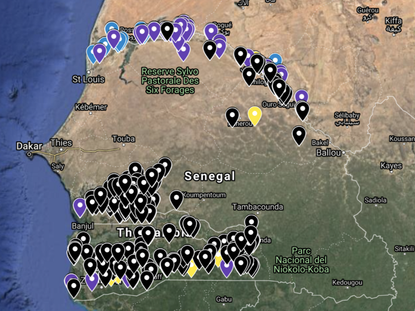 locations of crops from the IPAR study (black=Millet, Blue=Rice, Purple=Rice Irrigated, Yellow=Maize) Source: Omdena