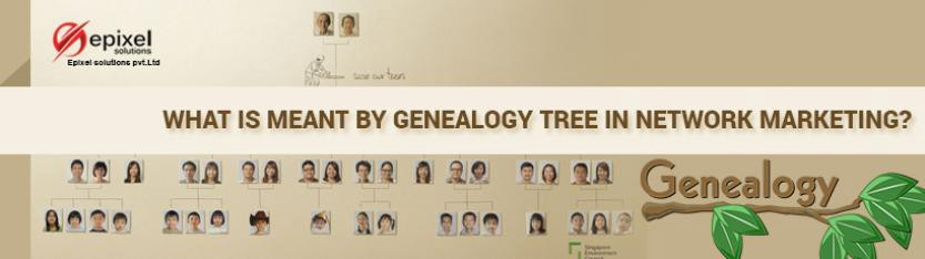 most in the world of network marketing and its a blow to the whole business game if a proper prep isnt organized so what exactly is genealogy tree