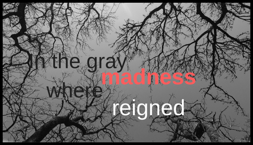 In the Gray Where Madness Reigned