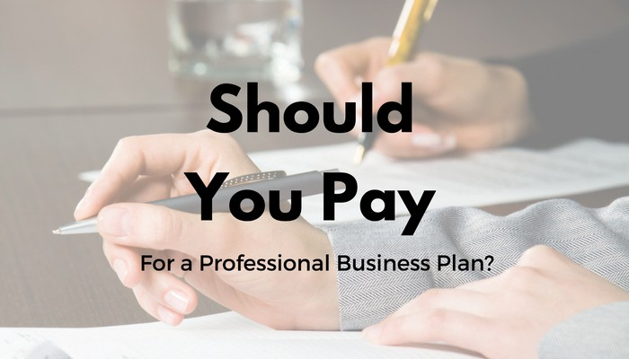 should you pay for a professional business plan multiplier