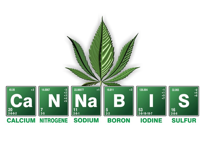 Problems Of The Cannabis Industry Herby Money Medium